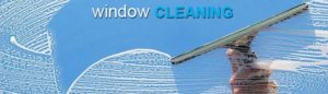 The Best Window Cleaning Company in the area