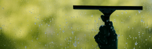 Houston Window Cleaning
