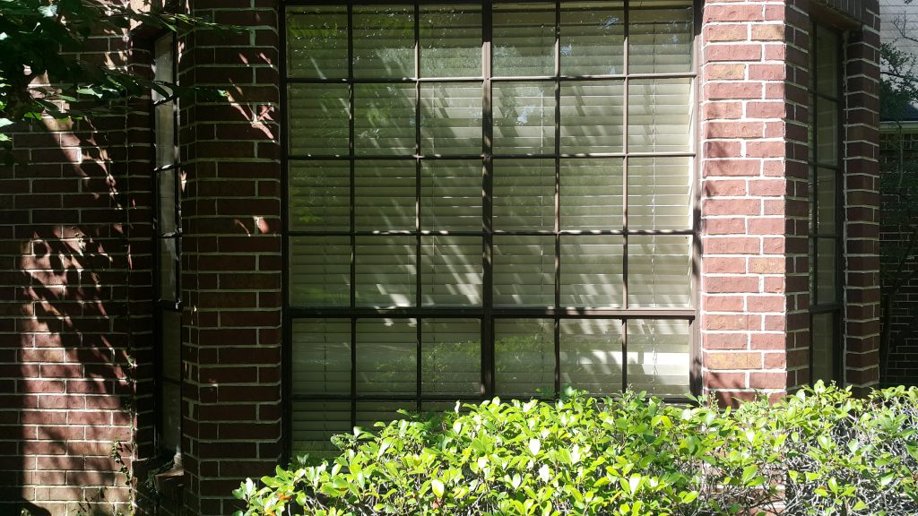 Window Cleaning & Window Washing Services