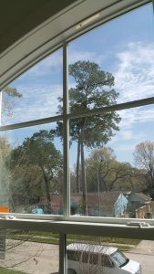 Professional Window Cleaning in Sugar Land, Texas