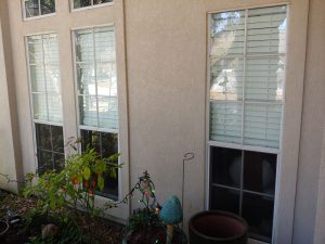 Window Washing Services Houston Heights
