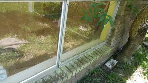 Clean Window Services in Houston, Texas