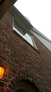 High-Quality Window Cleaning in Pearland, TX