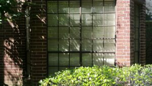 Wash and Sanitize your Windows in Houston