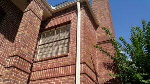 Pearland's Outdoor Window Cleaning Services