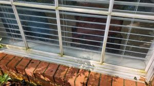 Window cleaning for Pollen in Houston