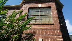 Clean and Sanitize your Windows in Katy Texas